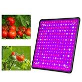 256 LED élèvent le spectre complet de lampe croissante légère pour la plante hydroponique d'intérieur de fleur