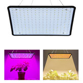 AC85-265V 35W 256LED Ultra delgado Espectro completo / Luz solar LED Grow Light Quantum Planta Light US / Enchufe de la UE