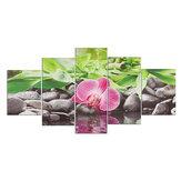 5Pcs HD Pinturas em tela de flores Impressão decorativa de parede Imagens de arte sem moldura Decorações de parede para escritório doméstico