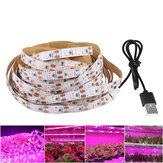 LED Grow Light Strip Full Spectrum 5V USB 2835 LED Plantas de interior em crescimento