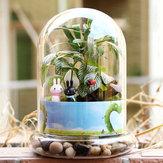 Cilindro a forma di fai da te muschio micro paesaggio bottiglia di vetro piante grasse vaso decorazione della casa