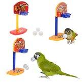 3個のペットの鳥は、子豚を噛むベルボルト、おもちゃのバーディー、バスケットボール、フーププロップ
