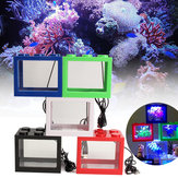 Mini USB LED Lys Klar Fish Tank Mini Aquarium Box Bettas Office Desktop Decor