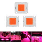 LUSTREON 20W 30W 50W Full Spectrum 380-840NM COB Plant Grow Light LED Chip DC30-40V
