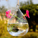 Haning Water Drop Shaped Glass Wazon Double Holes Bottle Home Garden Wedding Party Decoration