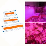 30W / 50W / 70W High Power Full Spectrum LED Grow COB Light Chip para plantas vegetais AC110V / AC220V