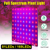 Ultra Thin 81 / 169LEDs Planta UV Grow Light Full Spectrum Veg Lamp para interior hidropônico Planta Flower 110-240V