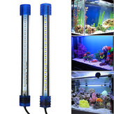 Acuario Impermeable luz LED Bar Fish Tank Submersible Down Light Tropical Acuario Producto 5W 50CM