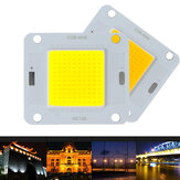 LUSTREON 20 W 30 W 50 W Wit Warm Wit 120LM / W COB LED Chip Bron voor Flood Light DC30-40V