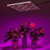 Form transformierbar LED Grow Light Wachstumslampen 85-265V Vollspektrum 10-stufiges dimmbares Ein-Aus-Timer-Pflanzenlicht für Zimmerpflanzen Hydroponic