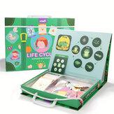 ألعاب تعليمية للأطفال في مرحلة الطفولة المبكرة الألغاز دورة حياة الألغاز المغناطيسية للتعلم الألغاز ألعاب تعليمية