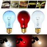 75W Heat Lamp Heating Infrared Pet Light Bulb for Reptile Tortoise AC110V