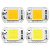 1X 5X 10X 50W 4200LM Warm / White DIY COB LED Perle Bulbe Bead 60x40mm pour Inondation AC110 / 220V