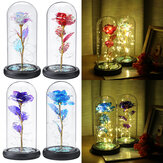 Crystal Galaxy Rose In The Glass Dome 20LED Lights Gift For Girlfriend Mom Wife Warm White