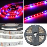 1M 2M 3M 4M 5M 3:1 5050 SMD LED Non-waterproof Hydroponic Plant Grow Strip Light DC12V