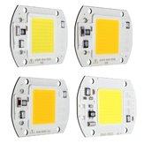 20W 1800LM quente / branco DIY COB LED Bulb Bulb bolha 60x40mm para luz de inundação AC110 / 220V