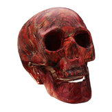Halloween Human Skeleton Head Horror Scary Gothic Skull Prop Home Party Decorations