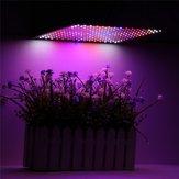 225LED Grow Light Blue & Red & White & Orange Lámpara Panel ultrafino Hidropónico Interior Planta Veg Flower AC85-265V