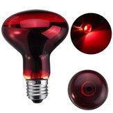 25W 40W 50W 60W 75W 100W R80 Red Infrared Basking Heat Reptile Bulb Light AC220-240V