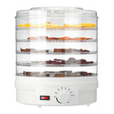 250W Food Dehydrator 5 Tray Shelf Dryer Machine Fruit Preserver Beef Jerky DIY Dried Fruit