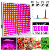 1200W LED Grow Light Panel Wachstumslampe Hydroponics Indoor Flower Veg Bloom Lighting AC85-265V