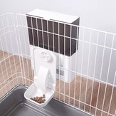Petwant F4-LED 2.3L Pet Dog Cat Smart Cage Automatic Feeder From Smart Feeding Machine
