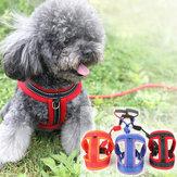 Pet Cachorro Cinta Confortável e Respirável em Malha de Gato Cachorro Tração Corda Corda Ajustável Corda Fivela Cachorro Corrente