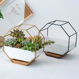 Wall Mount Frame Set Nordic Style Octagonal Succulent Flower Pot Table Display Plants Pot