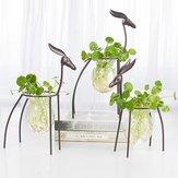 Cervo Contenitore idroponico Ornamenti europei Vaso da fiori trasparente Vaso per piante
