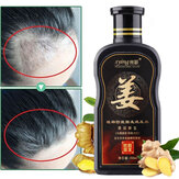 200ml Natural Ginger Shampoo Oil-Control Anti Dandruff Anti Hair Loss Hair Care