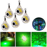 ZANLURE 5 Pcs Underwater LED Lâmpada de pesca Fluorescent Glow Bait Night Light