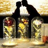Romantische ewige Rose Blume LED String Nachtlicht Geschenk für Geburtstag Hochzeit Valentinstag