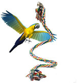 Pet Parrot Chew Corda Budgie Bell Bird Perch Coil Swing Cockatiel Gaiola Brinquedos