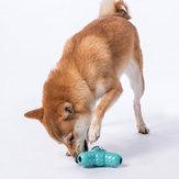 جوردان آند جودي بيت تويز ضد للماء لعبة قطة كلب دغة مقاومة للأسنان