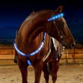 Ao ar livre LED Peito de cavalo luminoso Cinto Suprimentos de equitação de engrenagem de cavalo