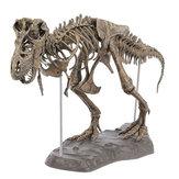 DIYカラー70Cm Tレックスティラノサウルスレックススケルトン恐竜動物コレクターモデルの装飾