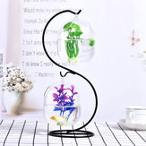 Creative Hanging Holder Crystal Terrarium Container Vase With Glass Ball Vase Pot Iron Stand Holder Decorations