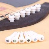 アコースティックギター用アワビドットブリッジエンドピン付き6本牛骨ギターパーツエンドピン
