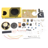 Original              DIY Radio Kit Teaching Soldering Practice Tube Components Making Kit