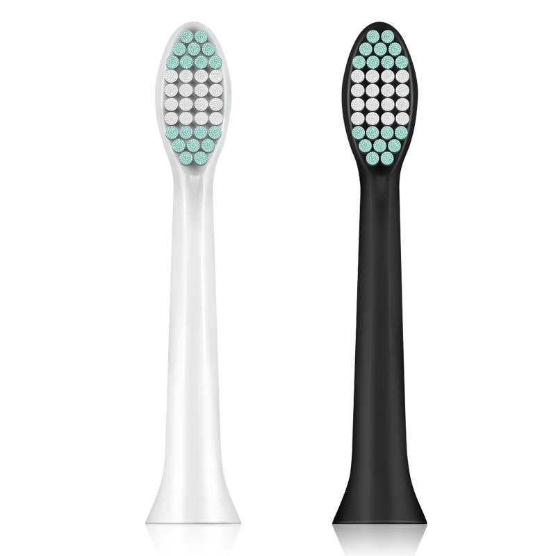 ToothBrush Head White & Black for Loskii PA-213 Ultrasonic Vibration Electric Toothbrush