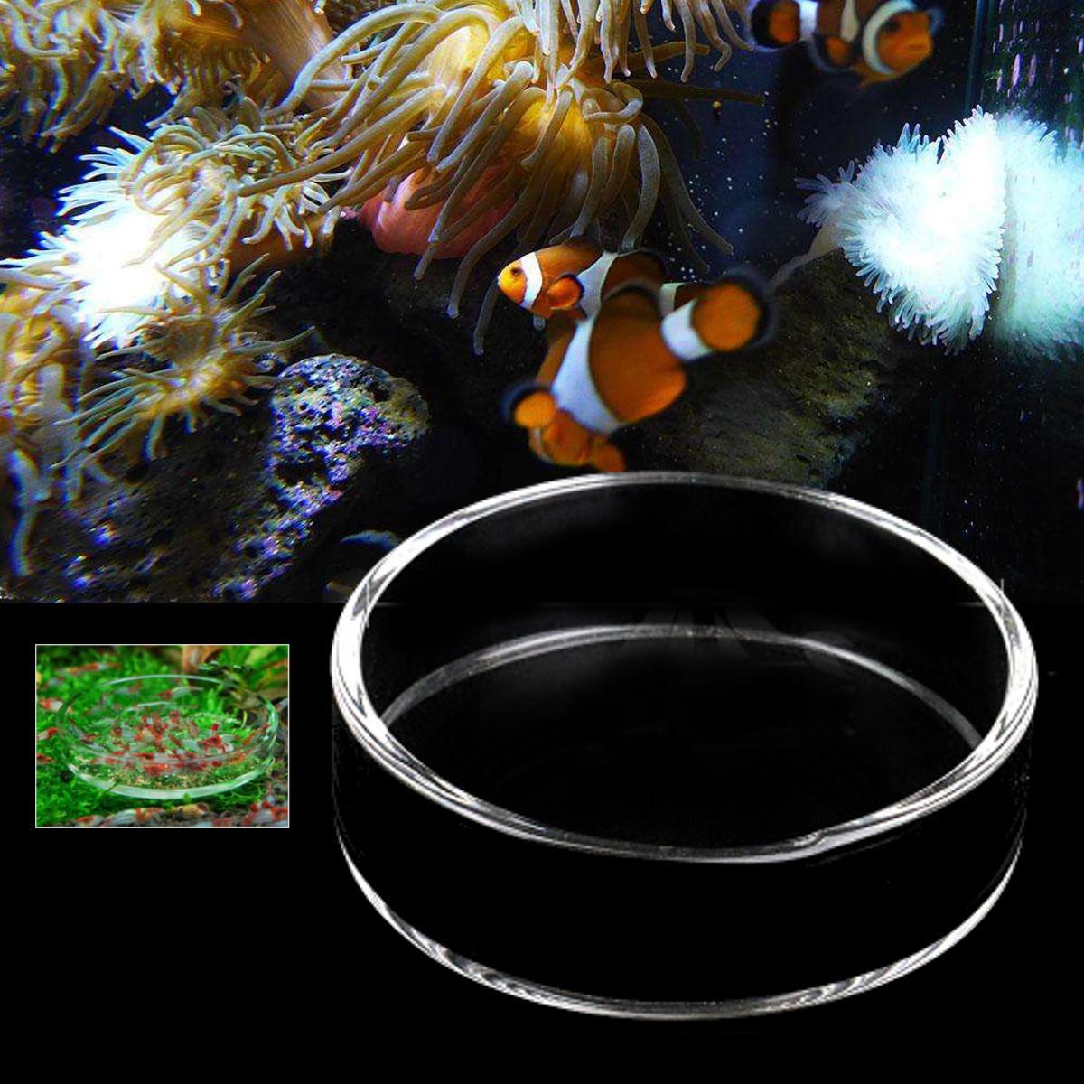 Transparente Acuario Tanque de pescado Vidrio Camarones Alimentación Alimento Plato Alimentador Bandeja Alimentador de pescado