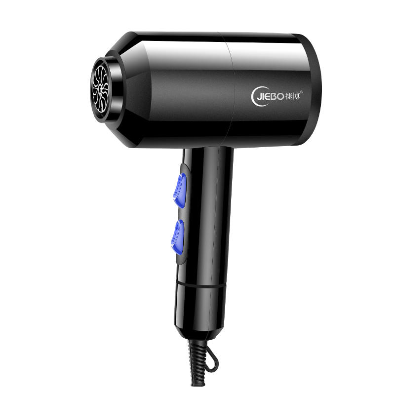 2200W Professional Hair Dryer Hair Care Fast Drying Household Salon