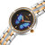 STRYVE T1018 Luxury Crystal Case Full Steel Women Watch Ladies Dress Quartz Watch