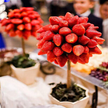 Egrow 100 Pcs/Pack Strawberry Tree Seeds Rare Fruit Strawberry Bonsai Seed Garden DIY Planting